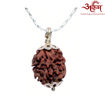 Picture of ARKAM Premium 2 Mukhi Oval Rudraksha / Original Two Mukhi Rudraksha / Natural 2 faced Rudraksha (Brown) with Silver Chain (92.5% Sterling Silver) and Silver Pendant with  detailed Puja and wearing instructions