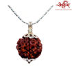 Picture of ARKAM Premium 4 Mukhi Rudraksha / Original Nepali Four Mukhi Rudraksha / Natural 4 faced Rudraksha (Brown) with Silver Chain (92.5% Sterling Silver) and Silver Pendant with  detailed Puja and wearing instructions