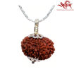 Picture of ARKAM Premium 13 Mukhi Rudraksha / Original Nepali Thirteen Mukhi Rudraksha / Natural 13 faced Rudraksha (Brown) with Silver Chain (92.5% Sterling Silver) and Silver Pendant with  detailed Puja and wearing instructions