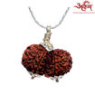 Picture of ARKAM Premium Gauri Shankar Rudraksha / Original Nepali Gauri Shankar Rudraksha / Natural Gauri Shankar Rudraksha (Brown) with Silver Chain (92.5% Sterling Silver) and Silver Pendant with  detailed Puja and wearing instructions