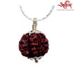 Picture of ARKAM Premium Savar Rudraksha / Original Nepali Savar Rudraksha / Natural Savar Rudraksha (Brown) with Silver Chain (92.5% Sterling Silver) and Silver Pendant with  detailed Puja and wearing instructions