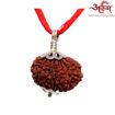 Picture of ARKAM Premium 13 Mukhi Rudraksha / Original Nepali Thirteen Mukhi Rudraksha / Natural 13 faced Rudraksha (Brown) with Silver Pendant and detailed Puja and wearing instructions
