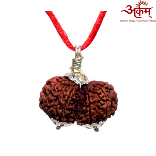 Picture of ARKAM Premium Gauri Shankar Rudraksha / Original Nepali Gauri Shankar Rudraksha / Natural Gauri Shankar Rudraksha (Brown) with Silver Pendant and detailed Puja and wearing instructions