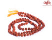 Picture of Arkam Rudraksha Mala/ 100% Natural Rudraksha Mala/ Original Rudraksha mala knotted (Size: 8mm, Beads: 108+1) with Gaumukhi