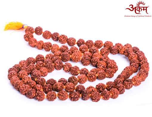 Picture of Arkam Rudraksha Mala/ 100% Natural Rudraksha Mala/ Original Rudraksha mala knotted (Size: 10mm, Beads: 108+1) with Gaumukhi