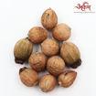 Picture of Arkam Laghu Nariyal / Shreephal / Shriphal / Mini Coconut / Premium Quality - Set of 11 Pcs