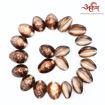Picture of Arkam Black Kauri / Kaali Kodi / Black Kaudi / Kali Kauri / Premium Quality for Puja - Set of 21 Pcs