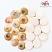 Picture of Arkam Gomti Chakra / Gomati Chakra / White Gomti Chakra / Original Premium Quality for Puja 22-25 mm - Set of 21 Pcs