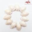 Picture of Arkam White Kauri / Safed Kodi / White Kaudi / Safed Kauri / Premium Quality for Puja - Set of 11 Pcs